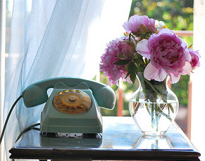blue-phone-and-flower2.